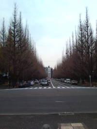 20091216151249_2